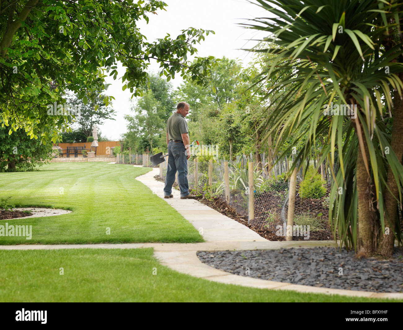 Gardener Inspecting Shrubs In Border - Stock Image
