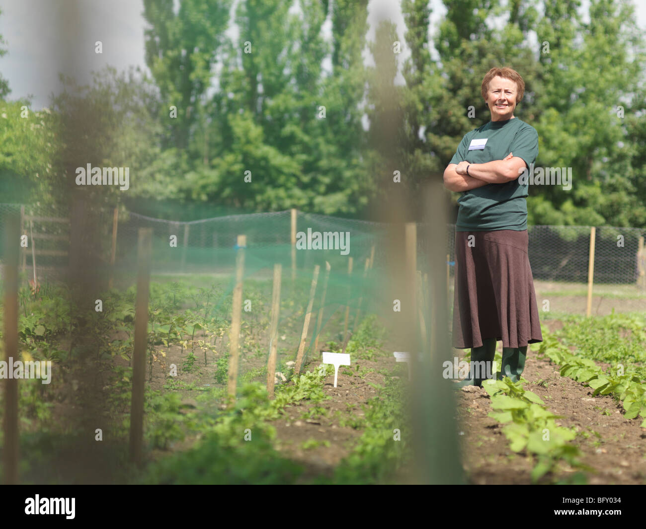 Female Garden Worker In Rows Of Plants - Stock Image
