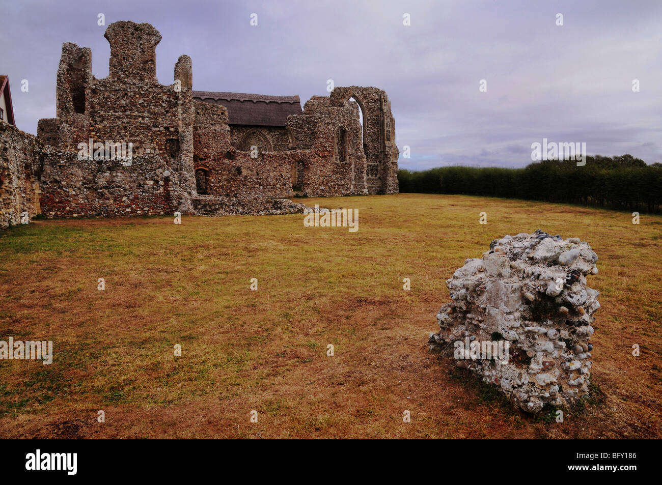 Leiston Abbey Ruins Suffolk - Stock Image