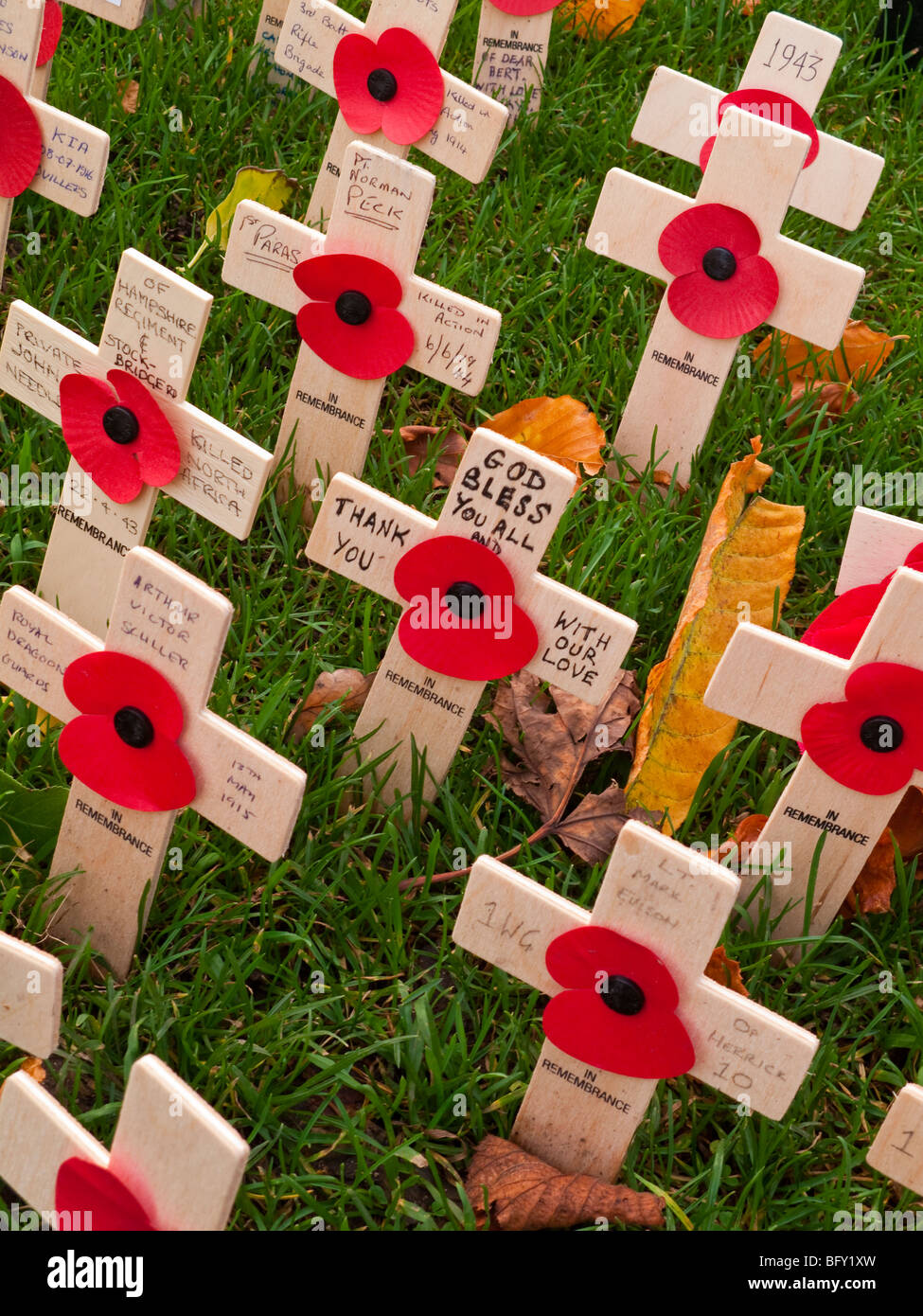 Detail of wooden crosses and poppies with names of fallen service personnel on Remembrance Sunday in November in - Stock Image