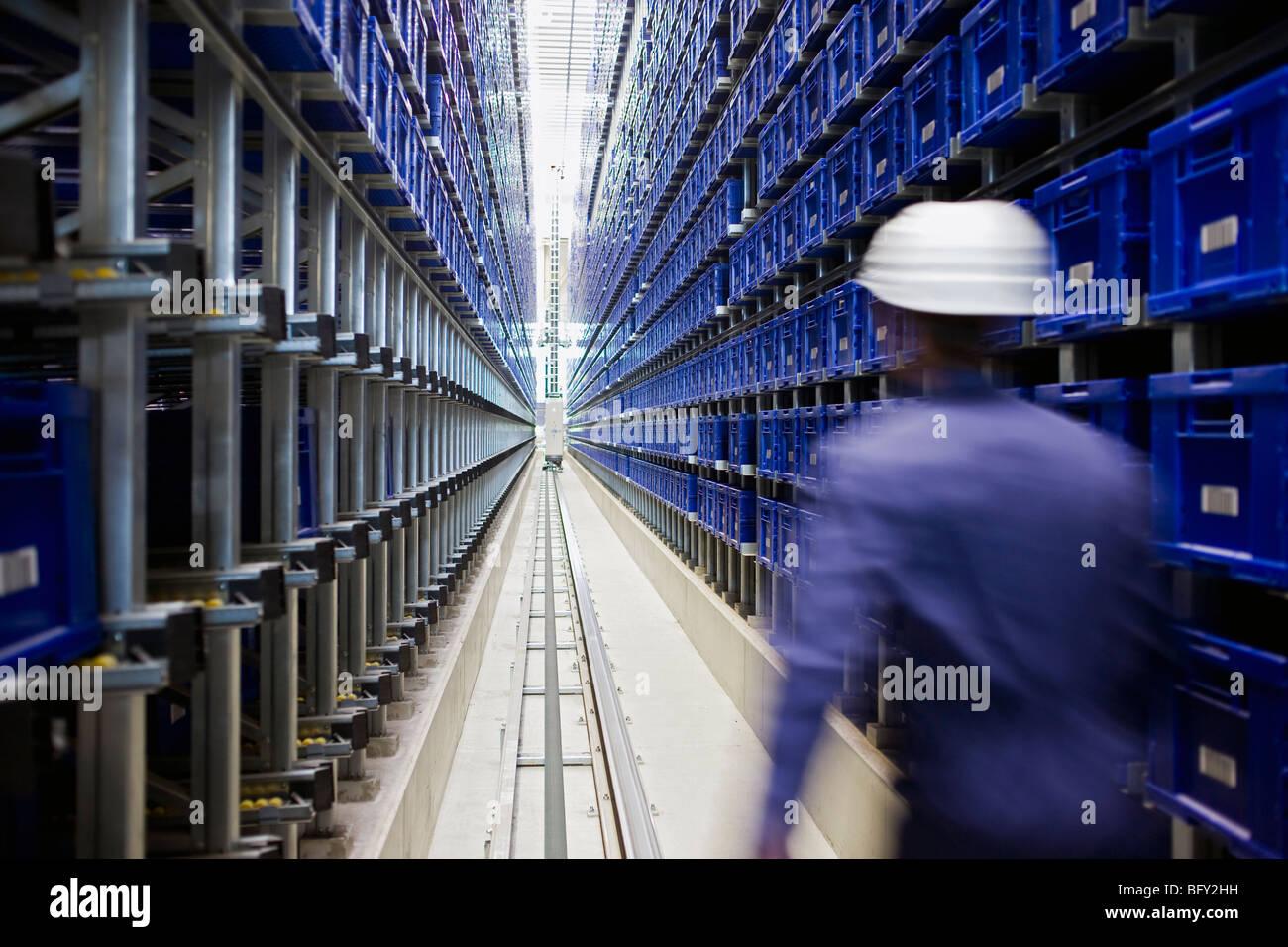 workman in storage - Stock Image