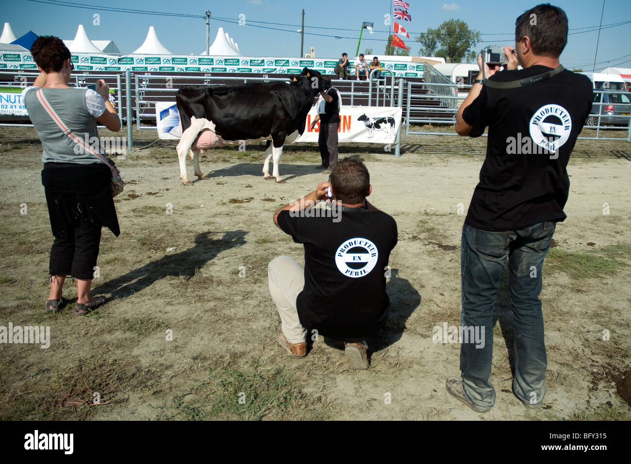 French dairy workers in tee-shirts with a milk trade alarm slogan photograph a prizewinning Holstein cow at a Gascon - Stock Image