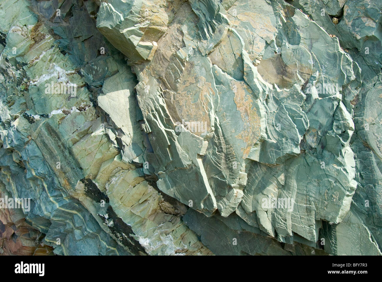 Pumpellyite and chlorite-rich strata alternate with epidote-rich bands, Avacha Bay, Kamchatka, Russia - Stock Image