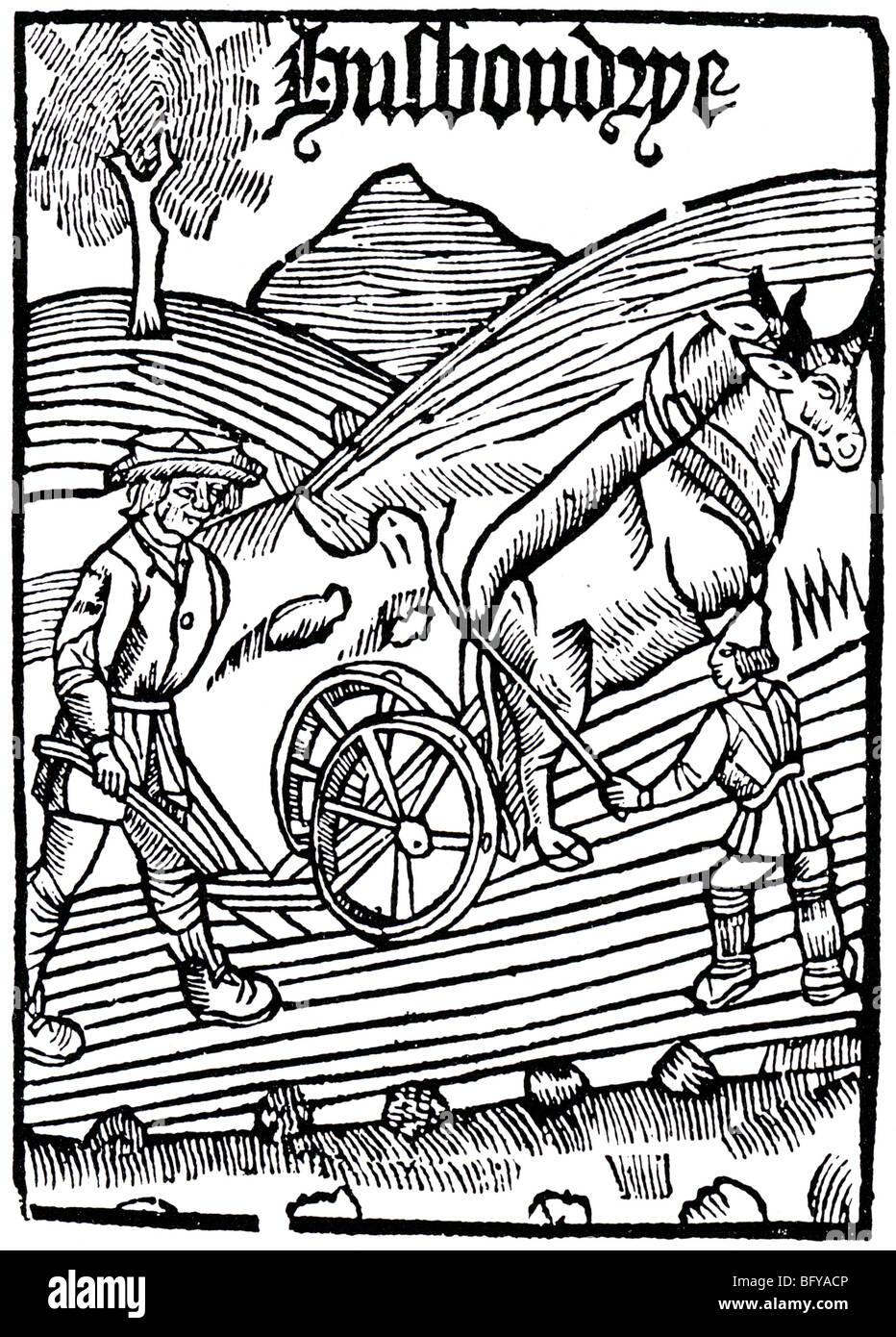 TUDOR PLOUGHING  woodcut engraving entitled Husbandry - Stock Image