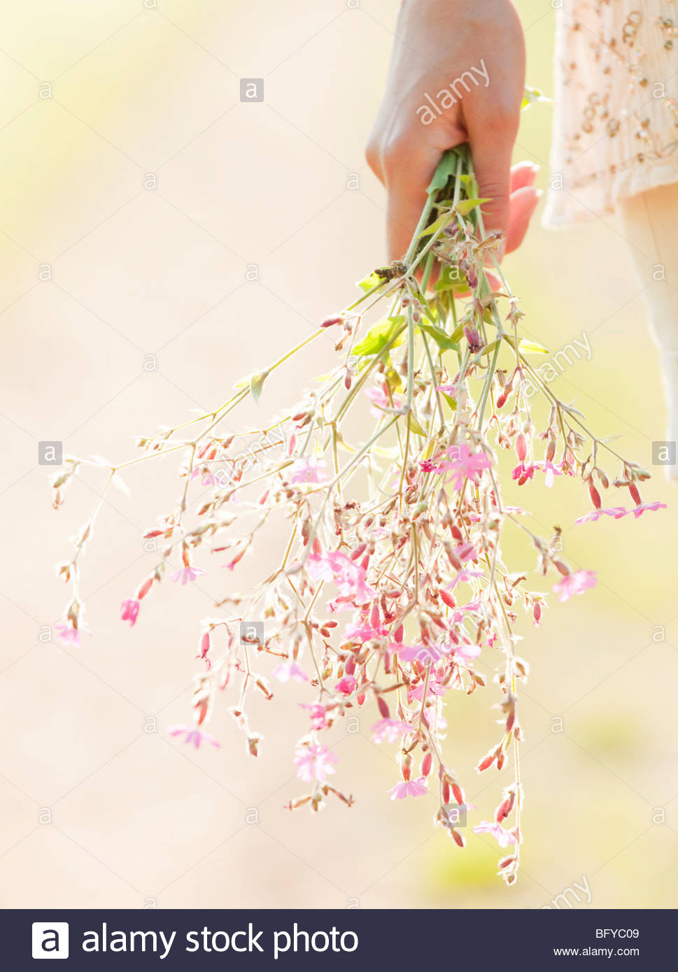 Woman holding bunch of flowers - Stock Image