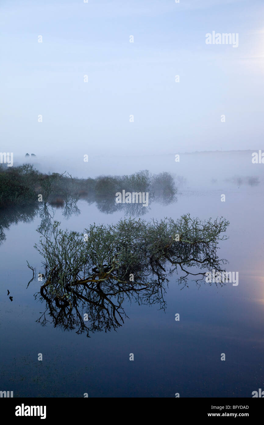 Stithians reservoir at night; with mist and moonlight - Stock Image
