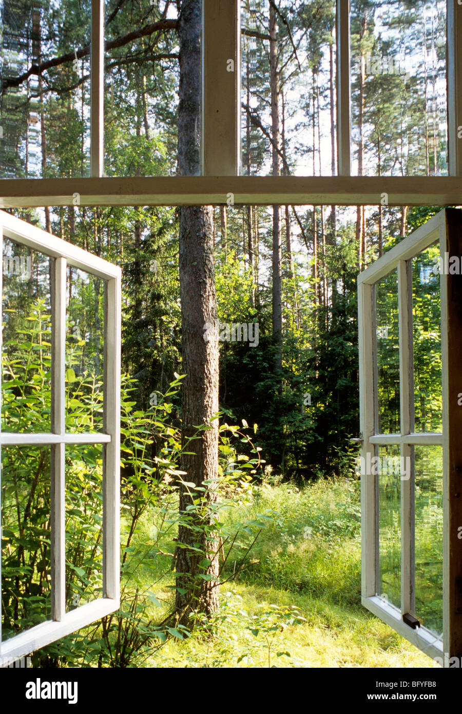 Open windows looking out into woodland near St Petersburg, Russia Stock Photo