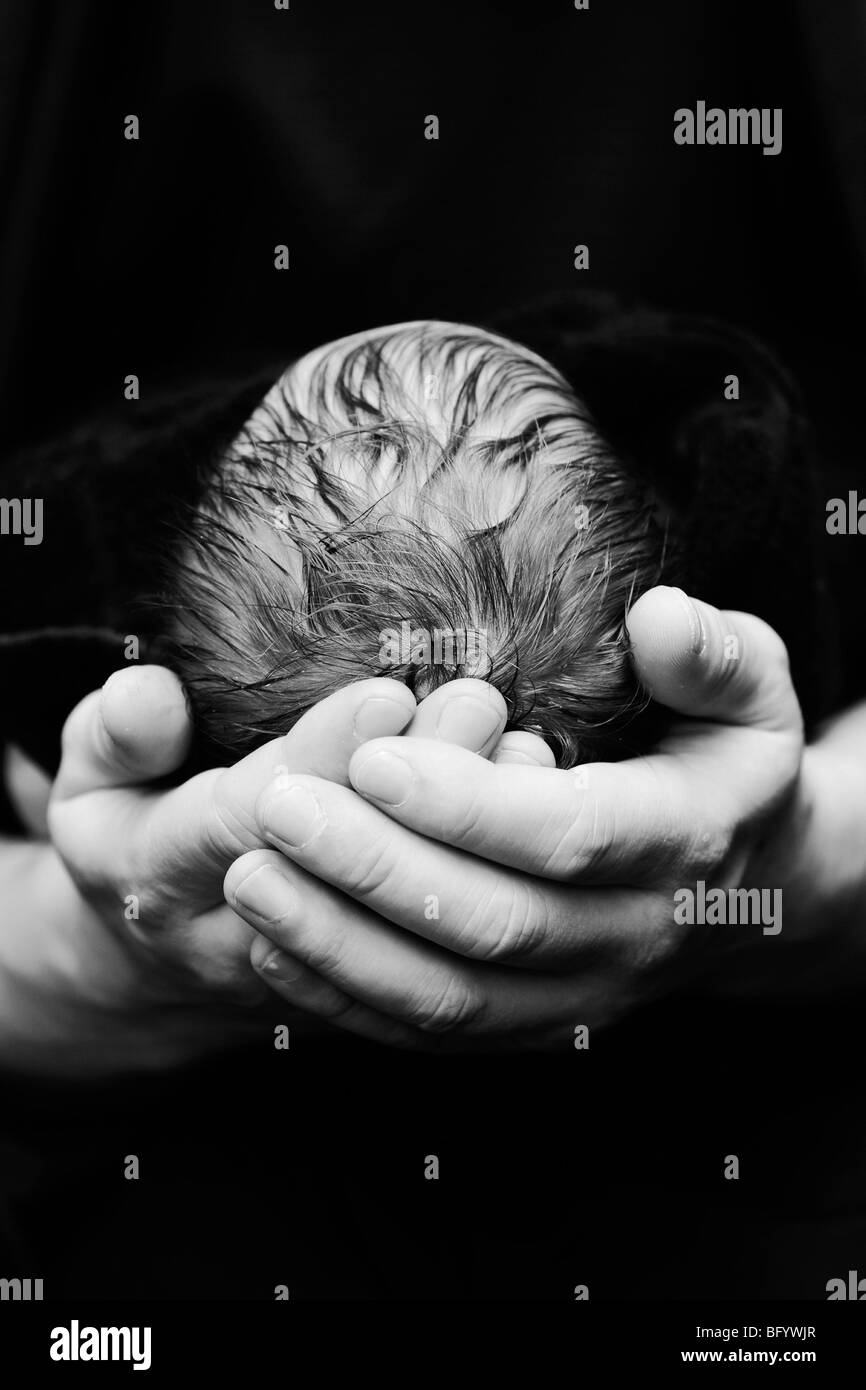 A black and white photograph of a newborn Caucasian baby's head being cradled in its Father's hands - Stock Image