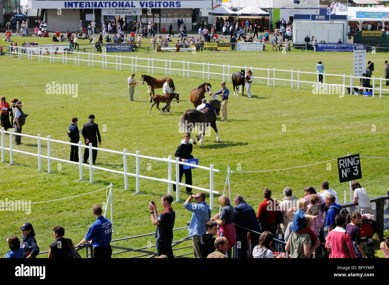 Judging of the pony competitions in the Main Ring at the 2009 Royal Highland Show, Edinburgh. - Stock Image
