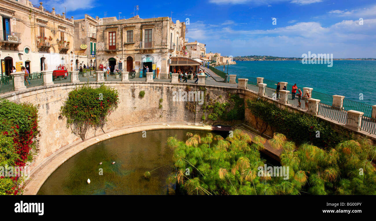 Greek Arethusa Fountain - Syracuse ( Siracusa) , Sicily - Stock Image