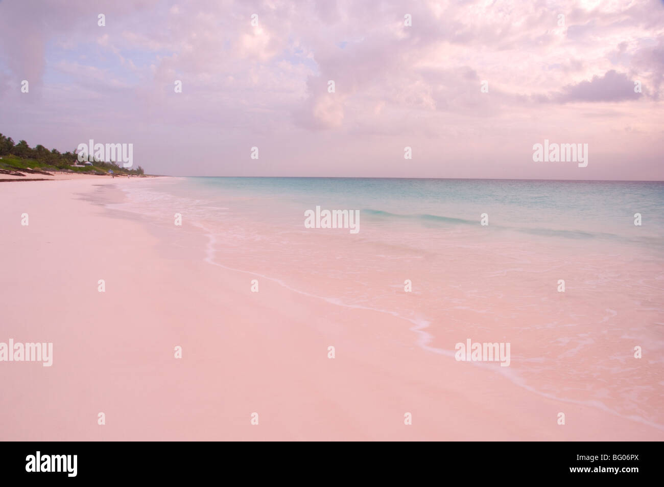 pink sands beach harbour island the bahamas west indies central