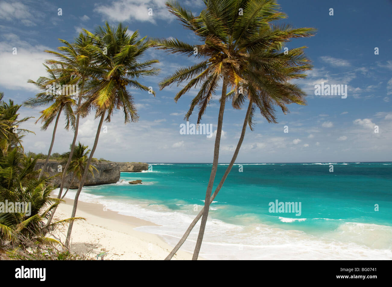 Palm trees and surf at Bottom Bay on the east coast of Barbados, Windward Islands, West Indies, Caribbean, Central - Stock Image