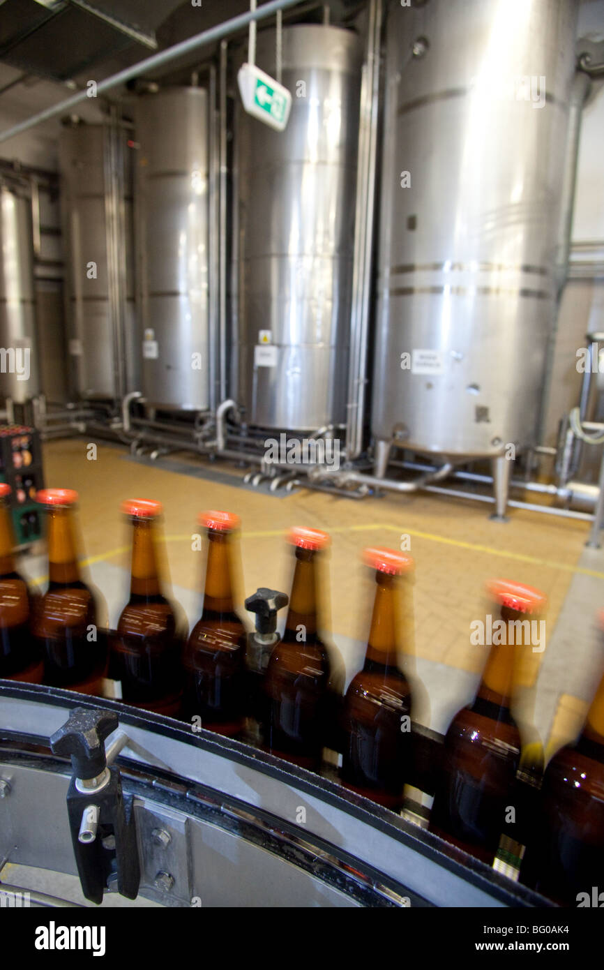 Filled bottles on conveyor belt in a brewery, Poland. - Stock Image