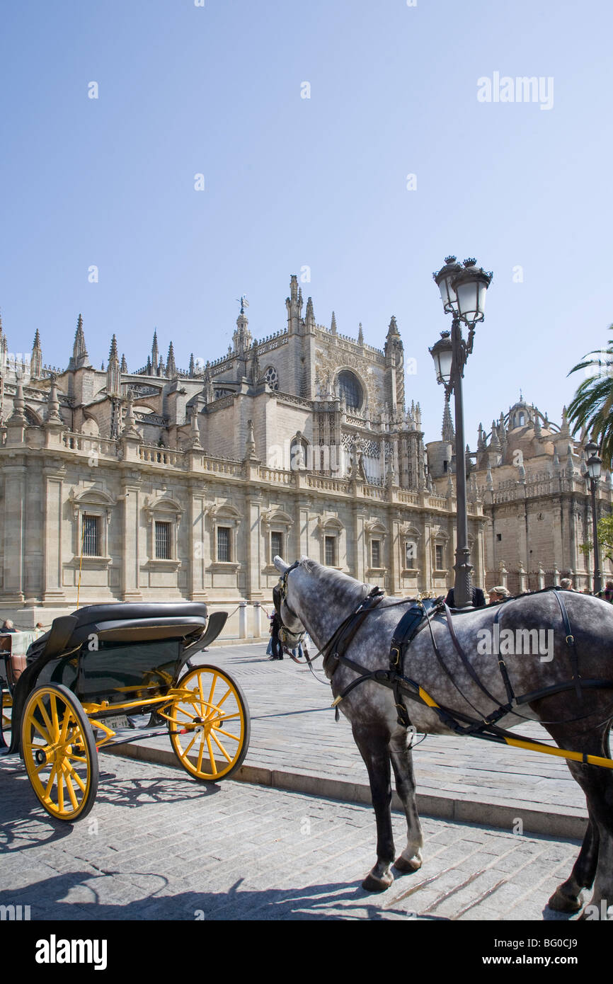 Horse cart on the road outside the Cathedral, Seville Cathedral, Seville, Spain, Patrimonio de la Humanidad - Stock Image