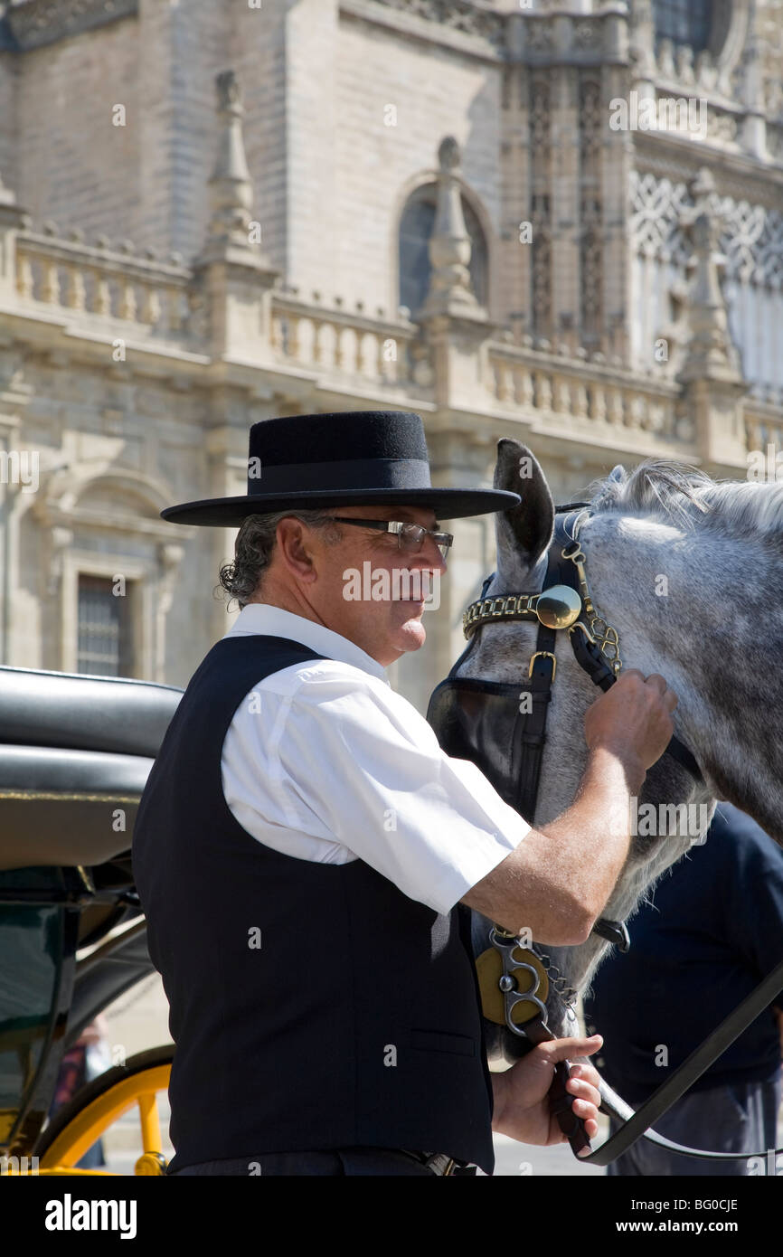 Man holding a horse with rein in front of a cathedral, Seville Cathedral, Seville, Spain, Patrimonio de la Humanidad - Stock Image