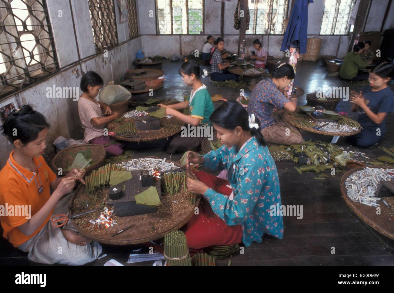 Cigar Factory in Pegu, Myanmar (Burma), Asia - Stock Image
