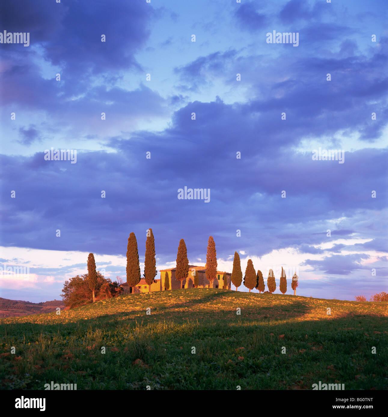 Near Pienza, Tuscany, Italy, Europe - Stock Image