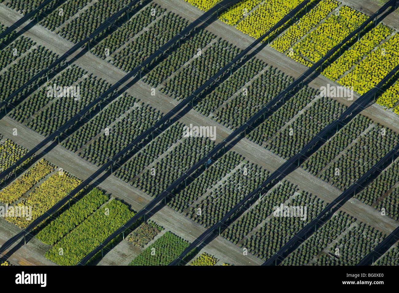 aerial view above nursery Solano county northern California Stock Photo