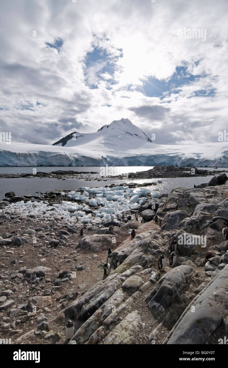 Jougla Point near Port Lockroy, Antarctic Peninsula, Antarctica, Polar Regions - Stock Image