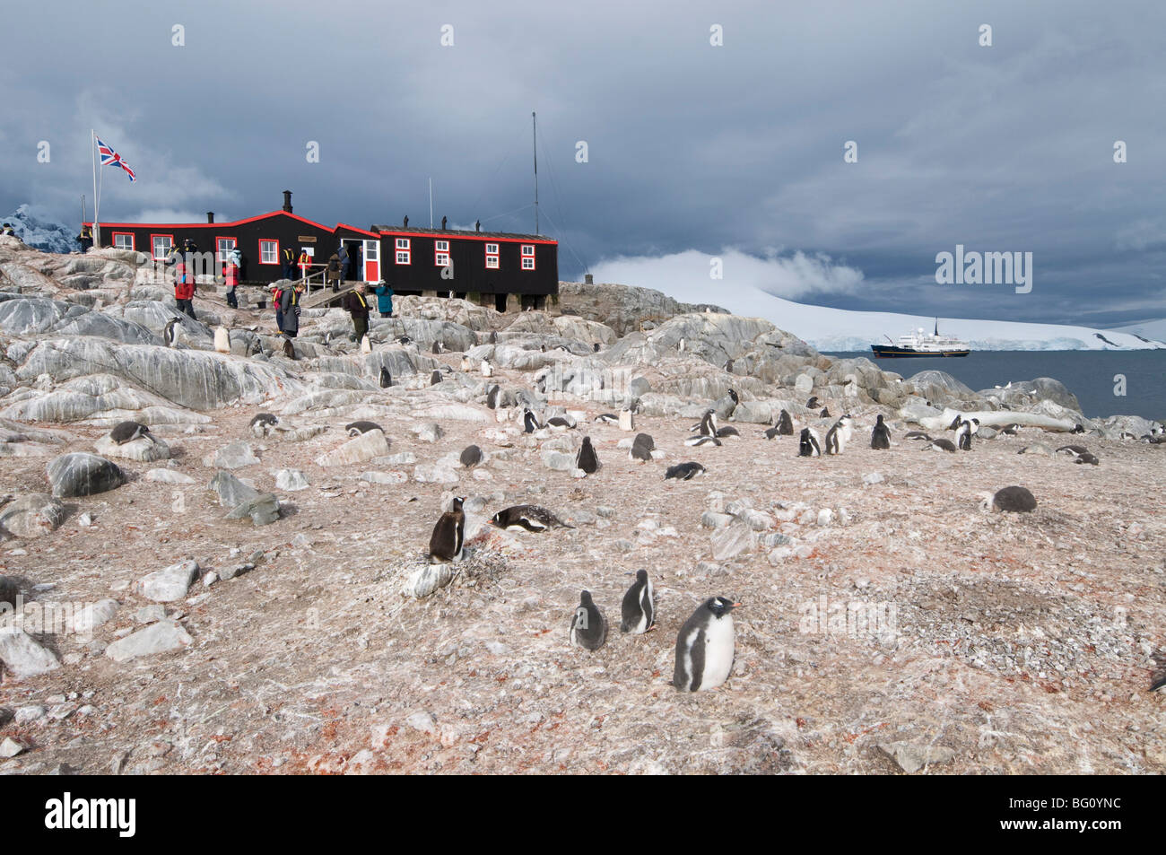British Base and Post Office, Port Lockroy, Antarctic Peninsula, Antarctica, Polar Regions Stock Photo