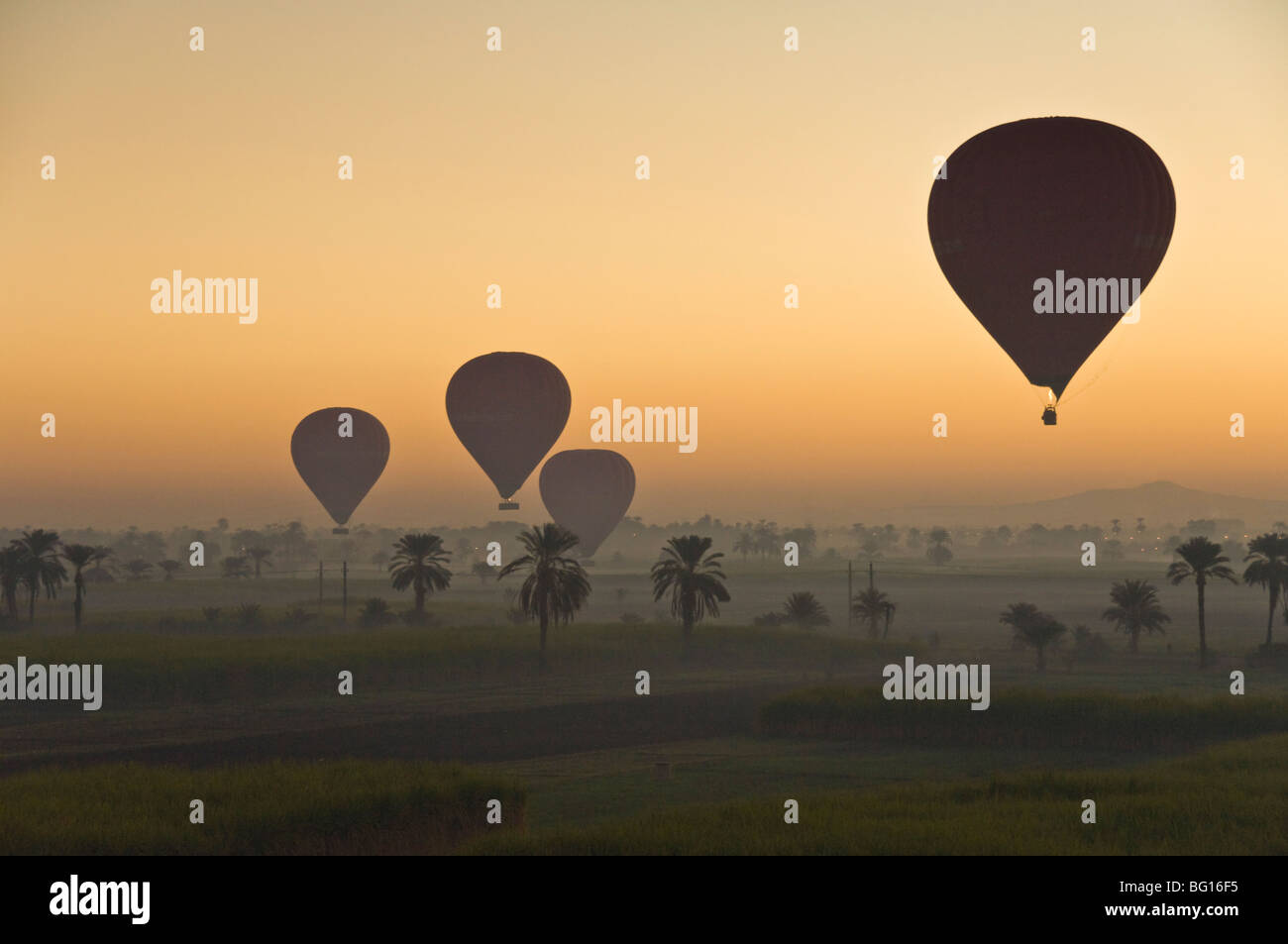 Lots of hot air balloons flying over the desert at sunrise west of the river Nile near Luxor, Egypt, North Africa, - Stock Image
