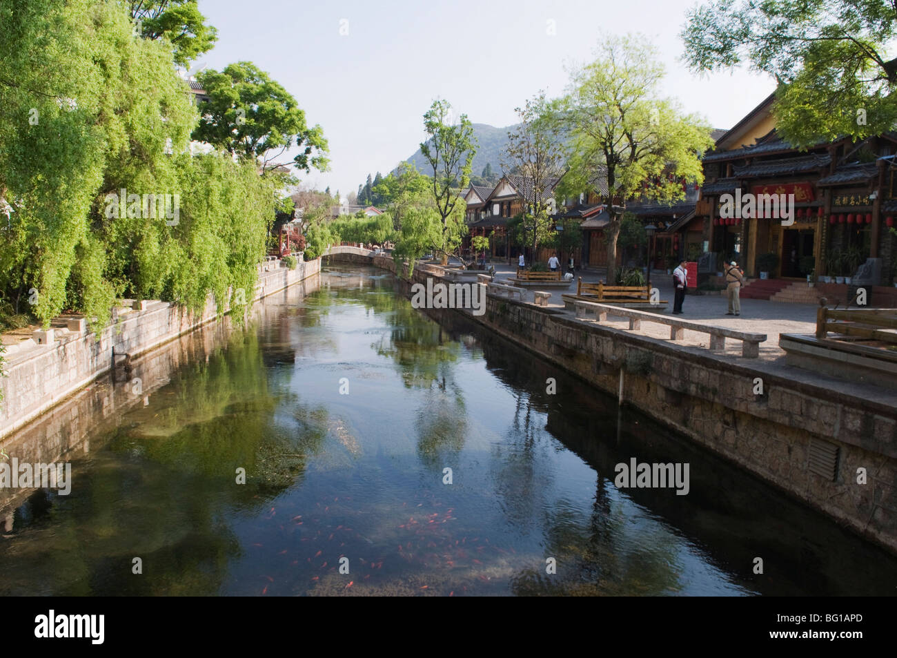 Riverside traditional architecture in Lijiang Old Town, UNESCO World Heritage Site, Yunnan Province, China, Asia - Stock Image