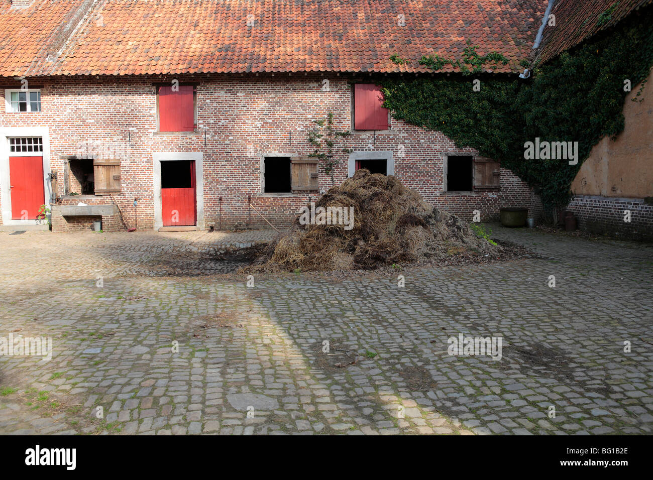 manure pile at farm Stock Photo