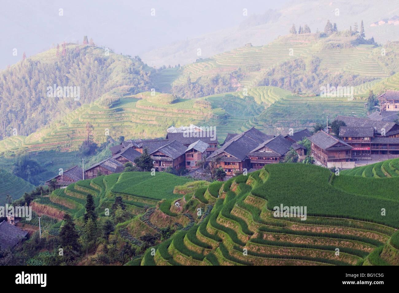 Dragons Backbone rice terraces, Longsheng, Guangxi Province, China, Asia Stock Photo