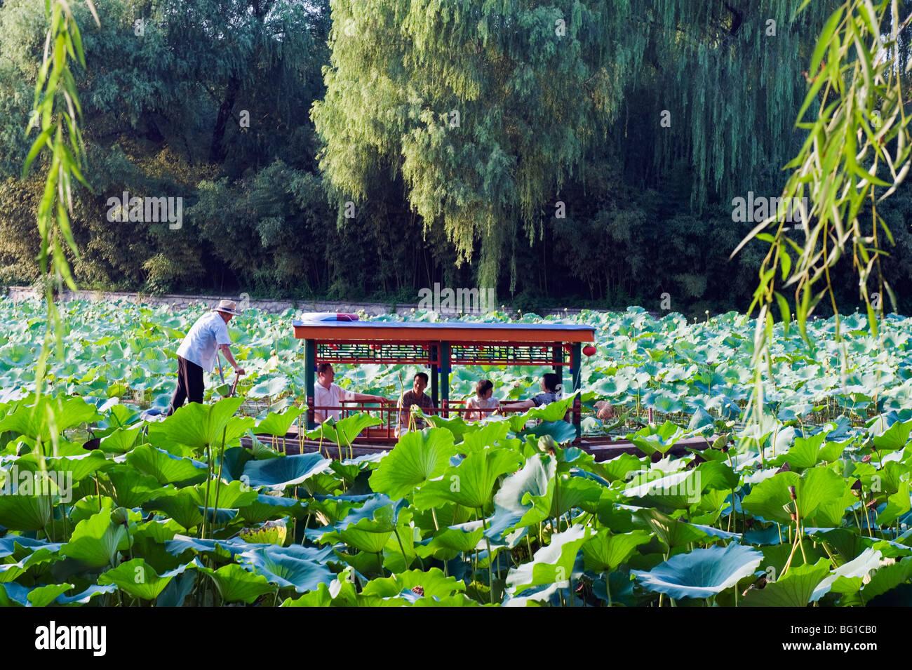A boat punting through lily pads at Zizhuyuan Black Bamboo Park, Beijing, China, Asia - Stock Image