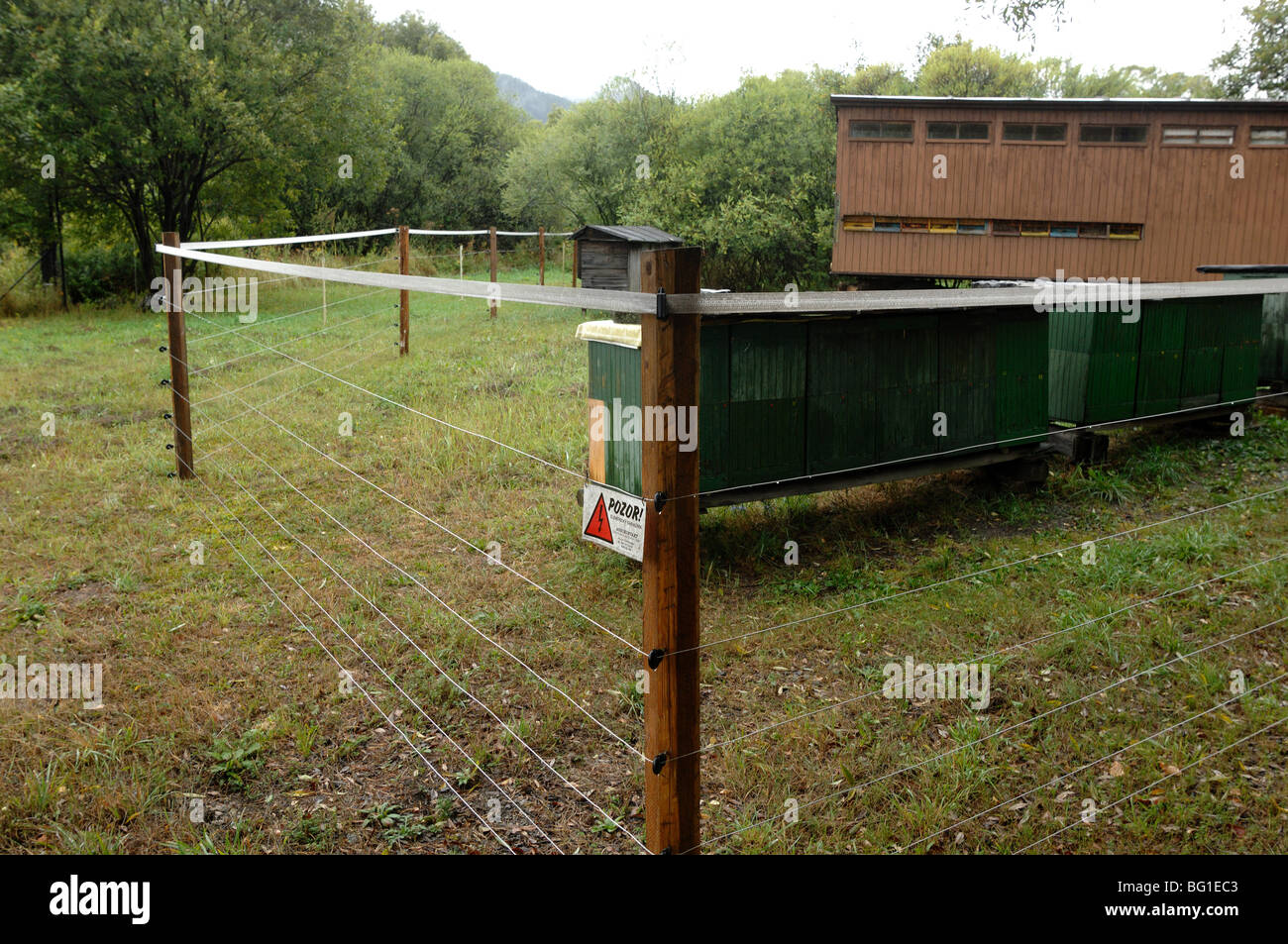 Anti Bear fence to protect bee hives in the low tatra mountains Slovakia - Stock Image