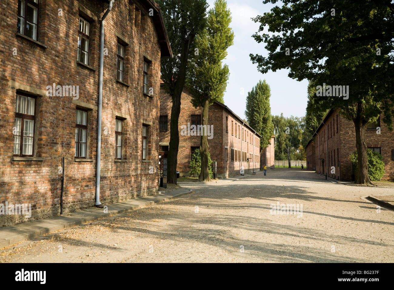 Prisoner accommodation blocks on either side of an avenue / road at the Auschwitz Nazi death camp in Oswiecim, Poland. - Stock Image
