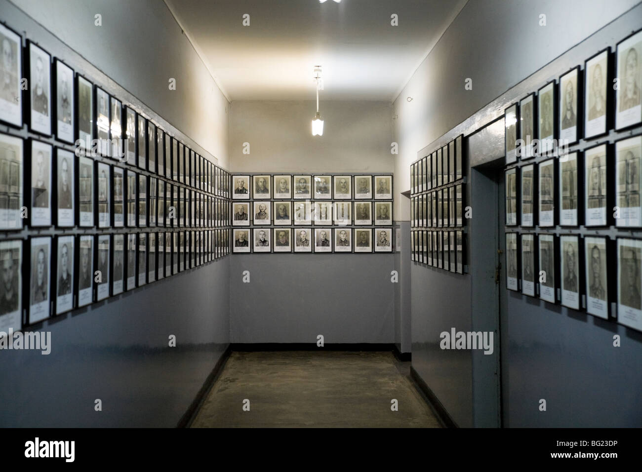 Photographs of prisoners / victims of the Nazis / SS, displayed on the walls of the Auschwitz musuem. Auschwitz - Stock Image