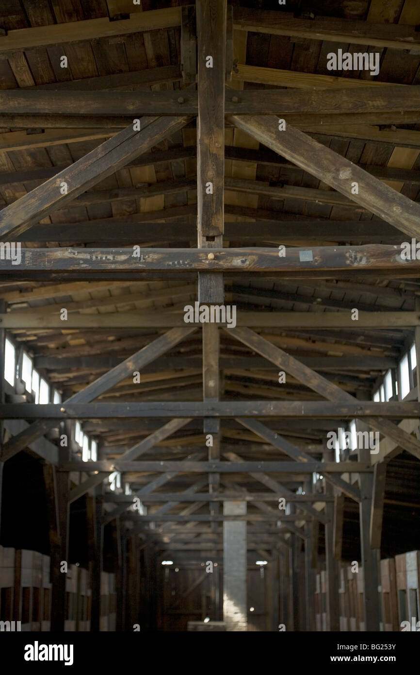 Roof with original Nazi slogans in a hut / shed of the Birkenau (Auschwitz II - Birkenau) concentration camp. Oswiecim. - Stock Image