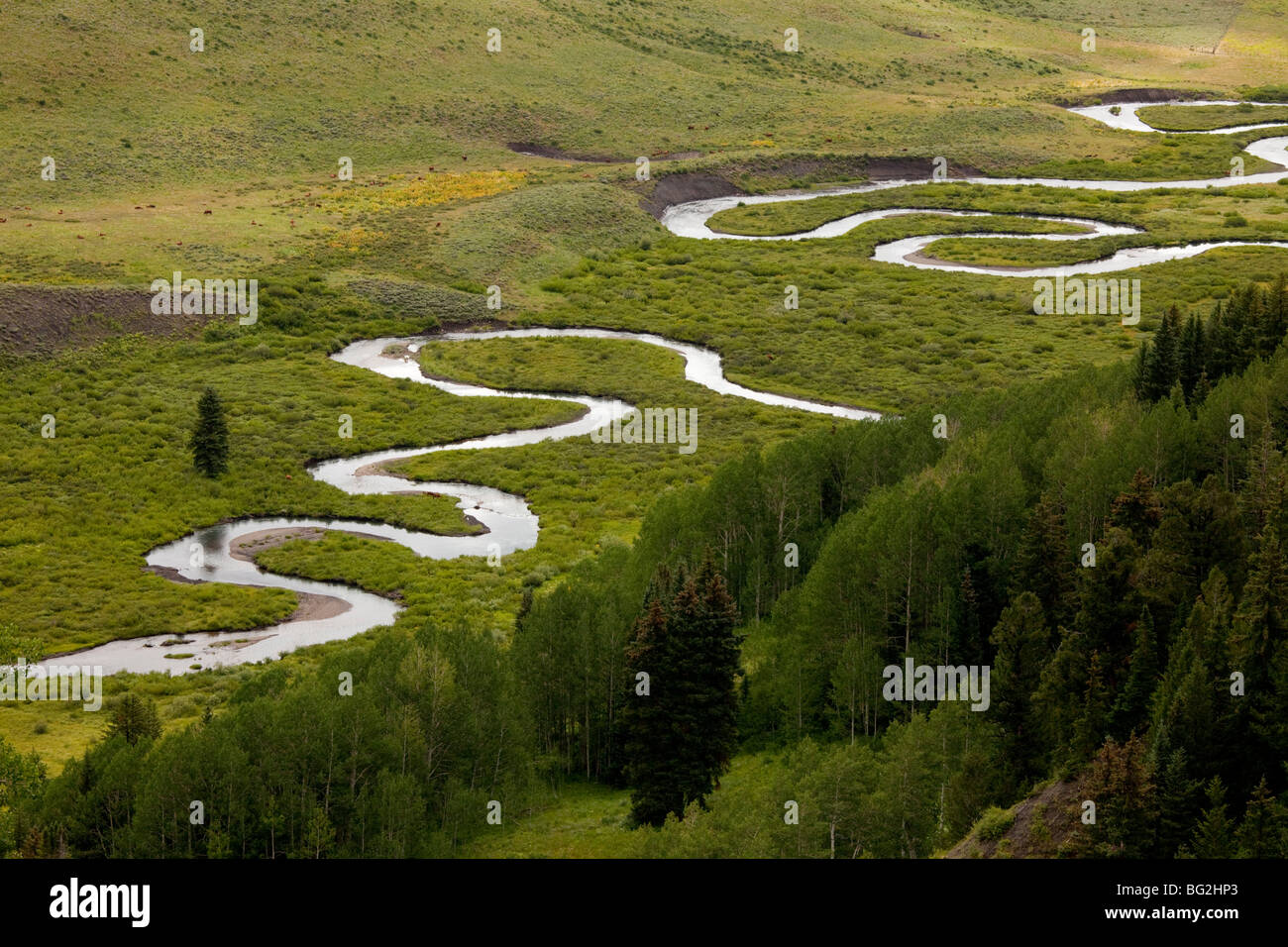 Classic meanders on East River, in Grand Mesa - Uncompahgre Gunnison National Forest, Crested Butte, The Rockies - Stock Image