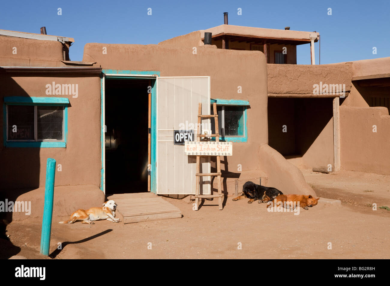 Sleeping dogs lying outside an Indian shop in Taos Pueblo in New Mexico Stock Photo