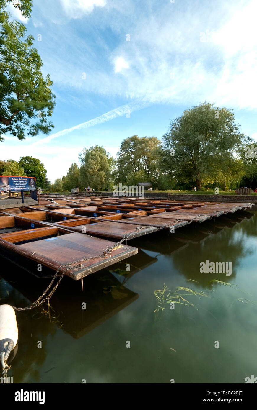 Punts on the River Cam at Scudamores Punt hire Cambridge - Stock Image