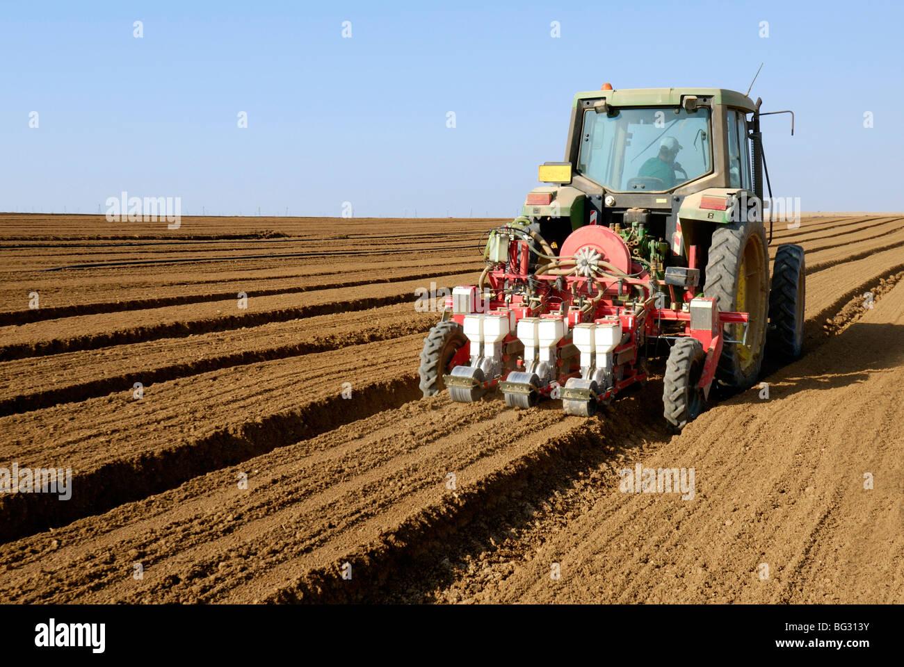 Israel, Negev Desert, Tractor plants seeds in a field Stock