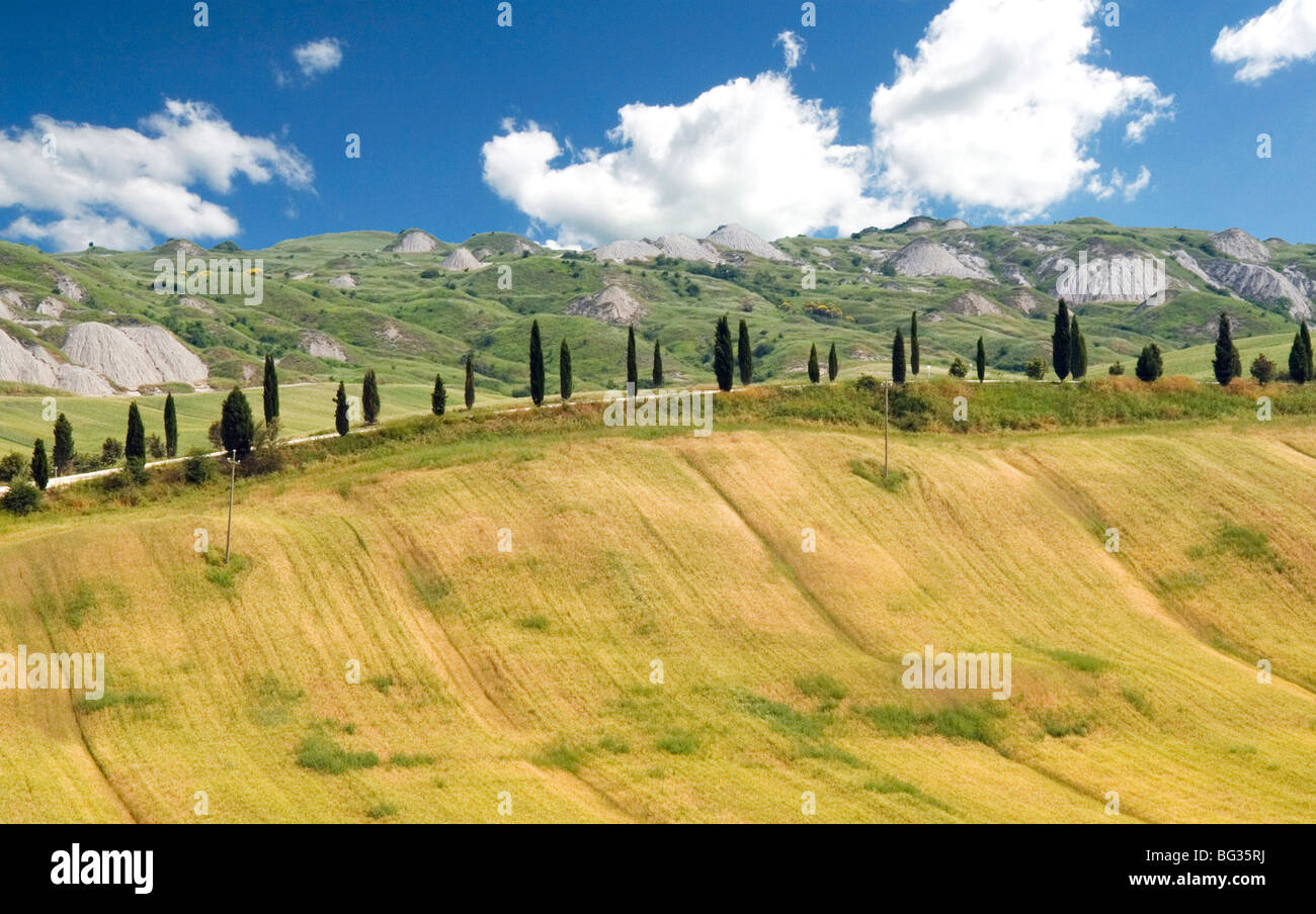 Crete Senesi area, near Asciano, Siena Province, Tuscany, Italy, Europe Stock Photo