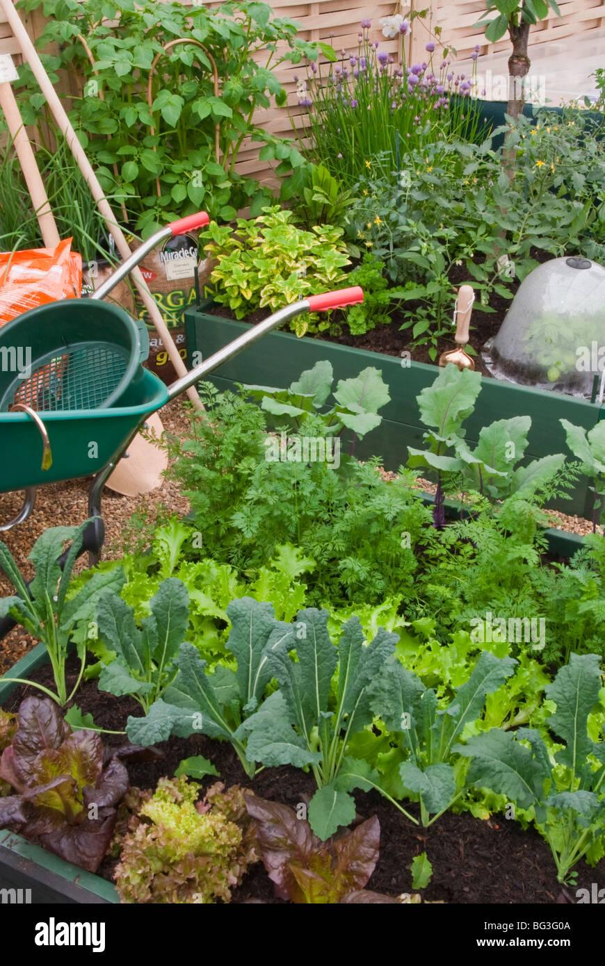 Vegetable Garden Wheelbarrow Plants Raised Beds Tools