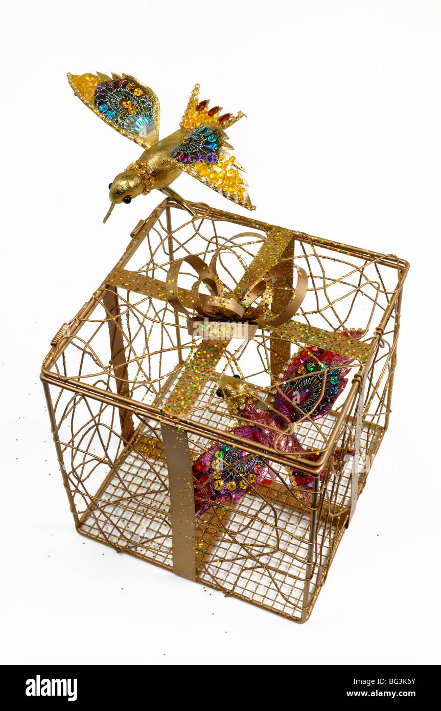 Hummingbird models in and on a gilded cage gift box on white background - Stock Image