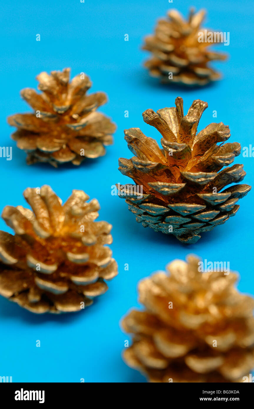 Golden pine cones looking like Christmas trees on blue background - Stock Image