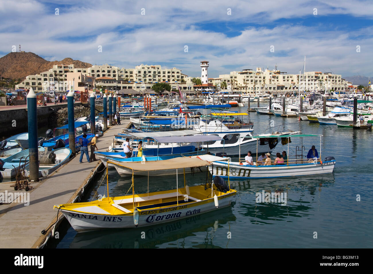 Marina, Cabo San Lucas, Baja California, Mexico, North America - Stock Image