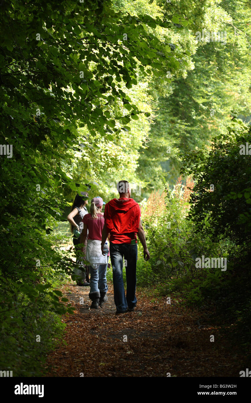Three (3) people walking in woods at the National Botanic Garden of Belgium at Meise (near Brussels) in Flemish - Stock Image