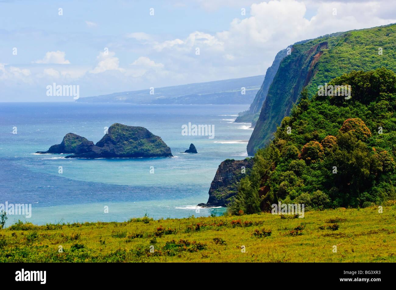 Pololu Valley, Kapaau coast, Big Island, Hawaii, United States of America, Pacific, North America Stock Photo