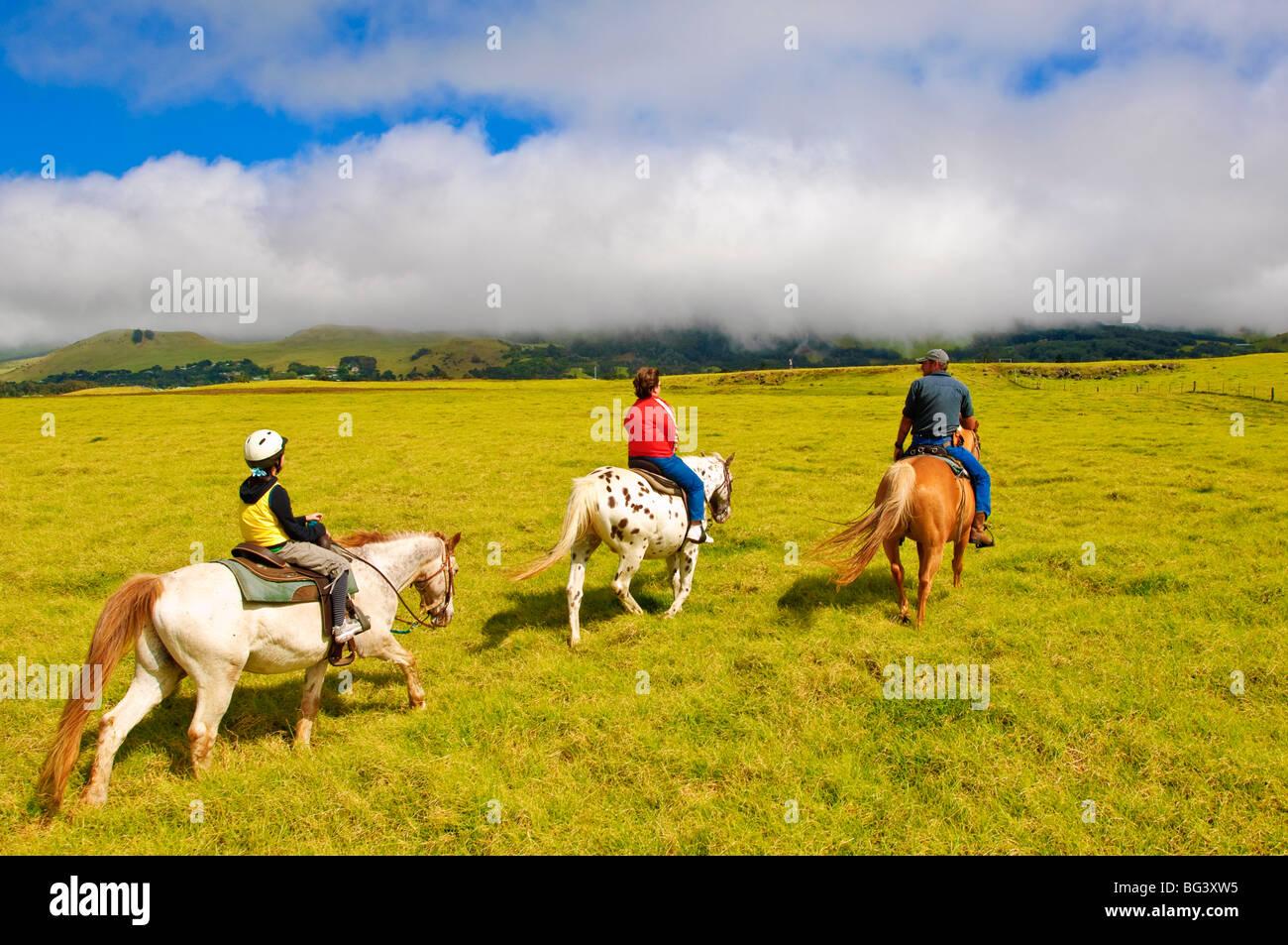 Horseback riding at Parker Ranch, The Big Island, Hawaii, United States of America, North America - Stock Image