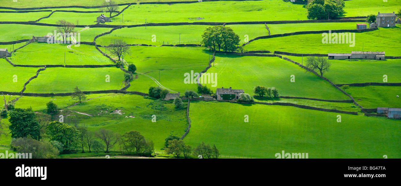 View across the Yorkshire Dales near Reeth in Swaledale, Yorkshire, England, United Kingdom, Europe - Stock Image