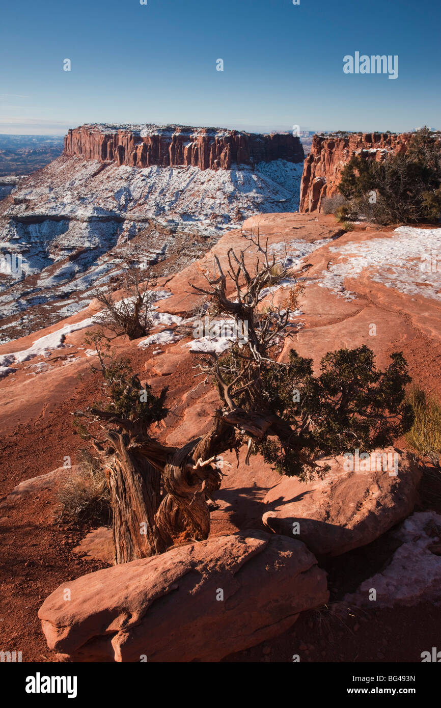 USA, Utah, Moab, Canyonlands National Park, Grand View Overlook, winter - Stock Image