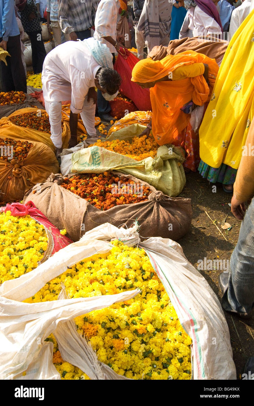 Woman buying marigolds tied up in cloth and sacking, flower market, Bari Chaupar, Jaipur, Rajasthan, India, Asia Stock Photo