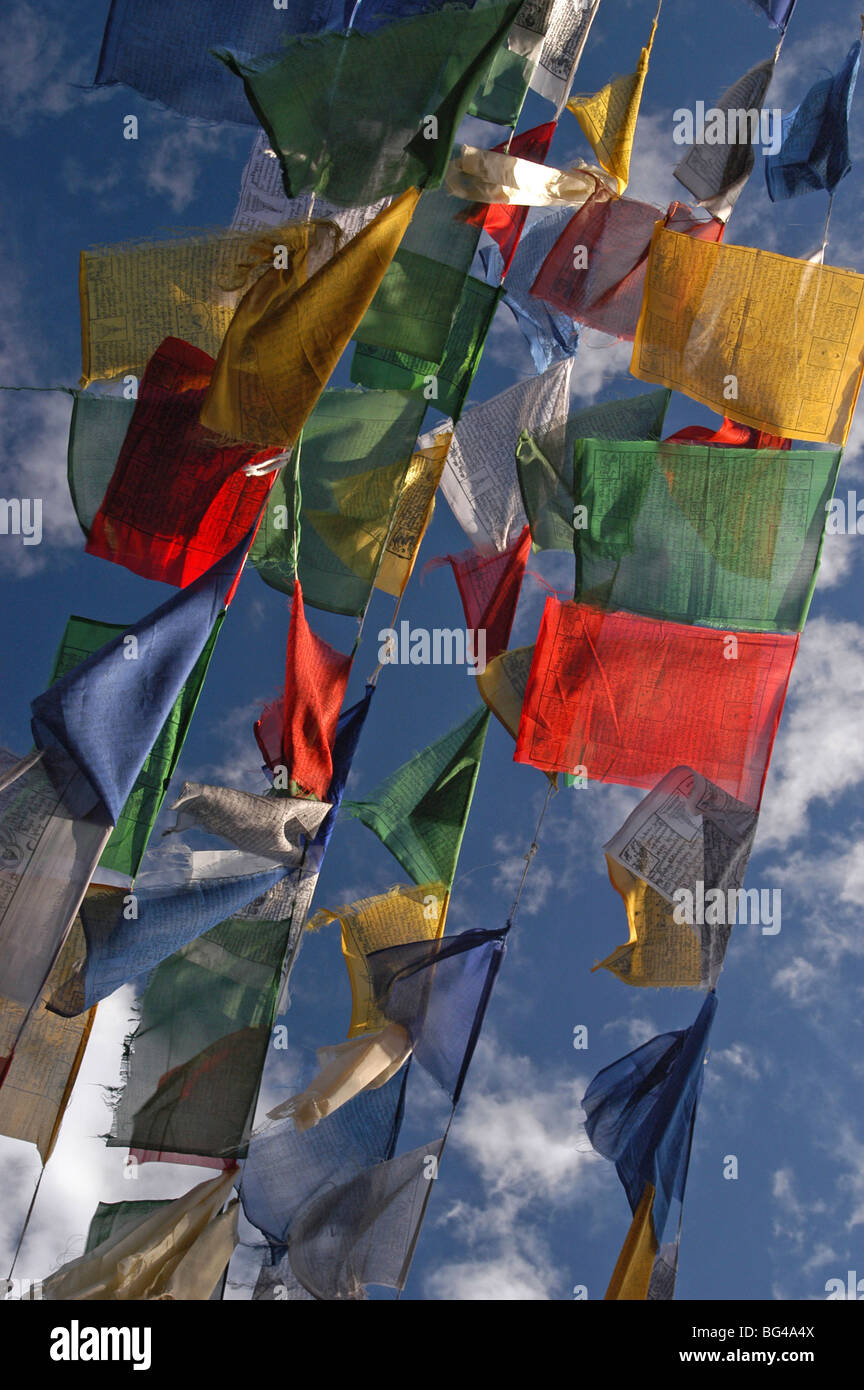 Budhhist prayer flags fluttering in the wind, Darjeeling, West Bengal, India, Asia - Stock Image