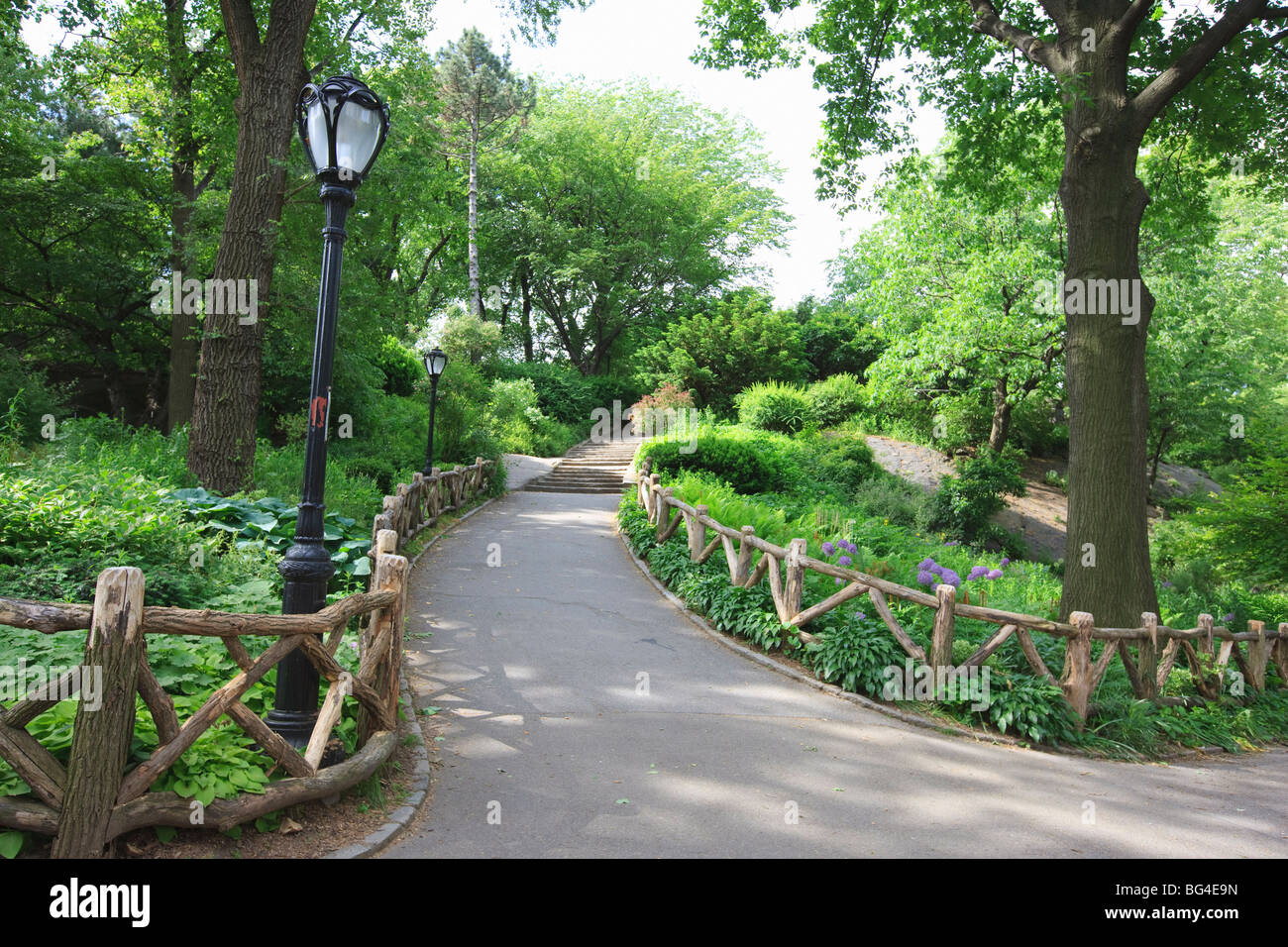 The Ramble, Central Park, Manhattan, New York City, New York, United States of America, North America - Stock Image